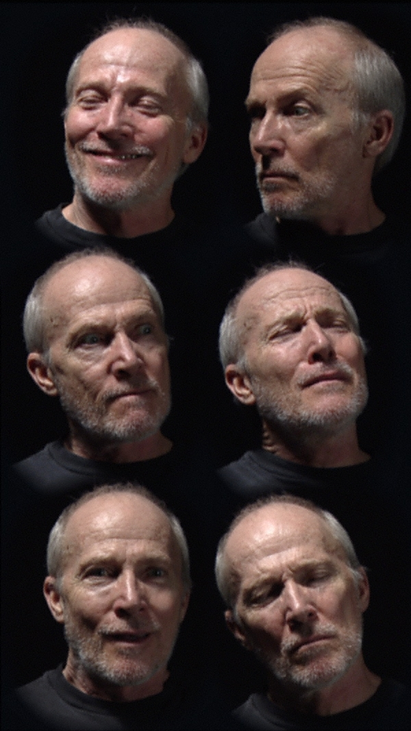Six heads 2000 by bill viola the collection art for Observance bill viola