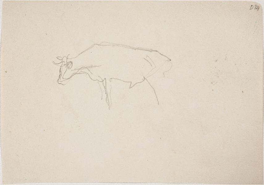 Cow) (Sketches from Wangi and Lake Macquarie) by William