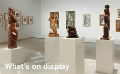Explore what's on display in The Collection