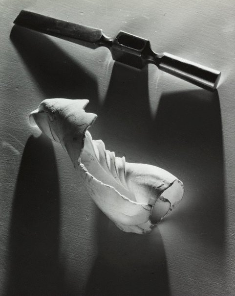 An image of Untitled (chisel and spiral shell) by Max Dupain