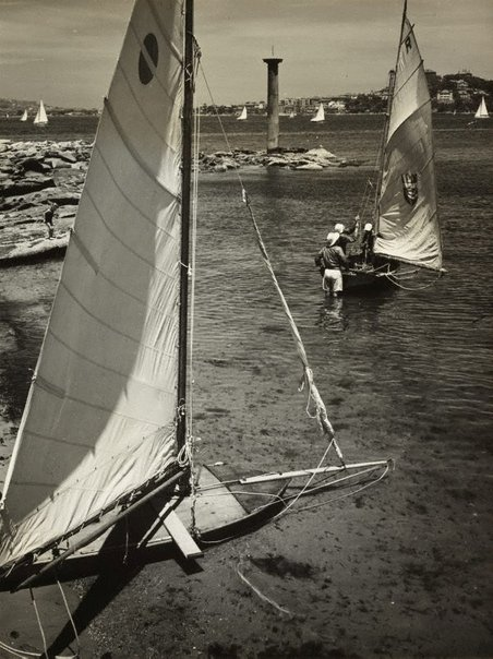 An image of Untitled (skiffs on Sydney harbour) by Max Dupain