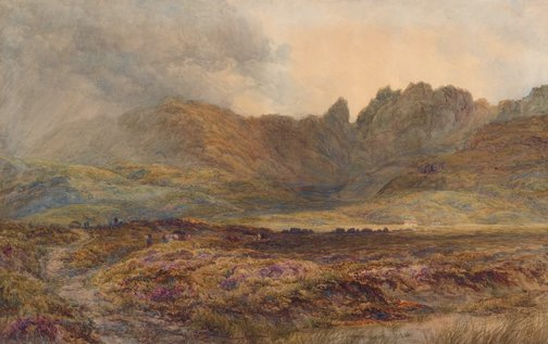 An image of Peat moss, Isle of Skye by David Law