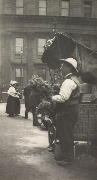 An image of Flower seller, Macquarie Place by Harold Cazneaux