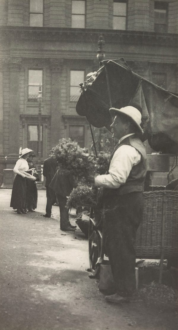 An image of Flower seller, Macquarie Place