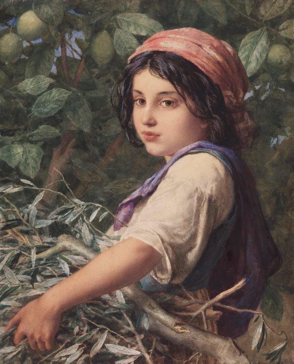 An image of Una fascina di olive