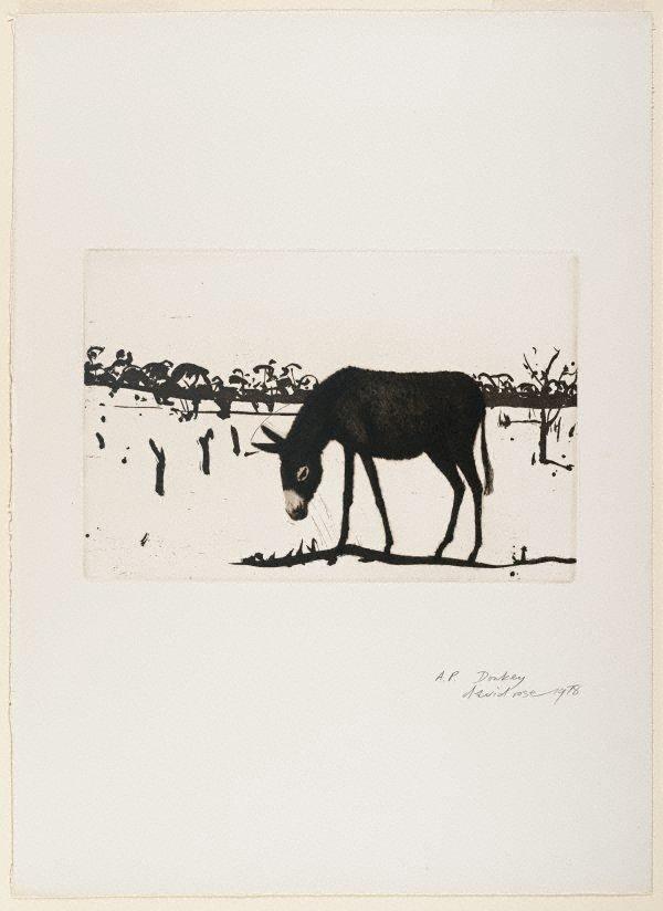 An image of Donkey