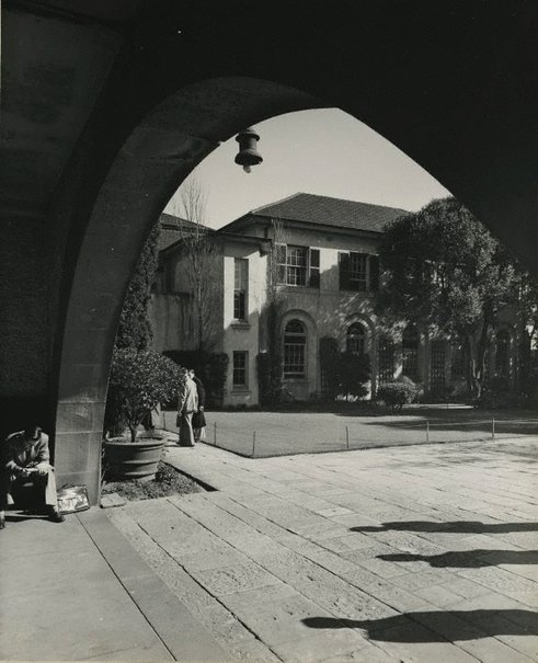 An image of Untitled (University of Sydney) by Max Dupain