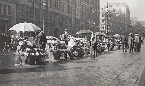 An image of Flower sellers in Martin Place