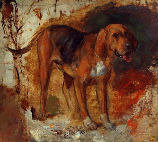 An image of Study of a bloodhound by William Holman Hunt