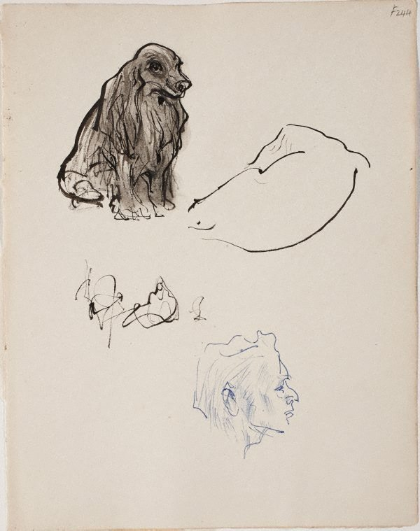 An image of (Dog studies and head) (Late Sydney Period)