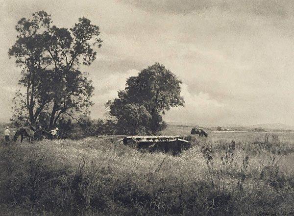 An image of Meadows near Morpeth