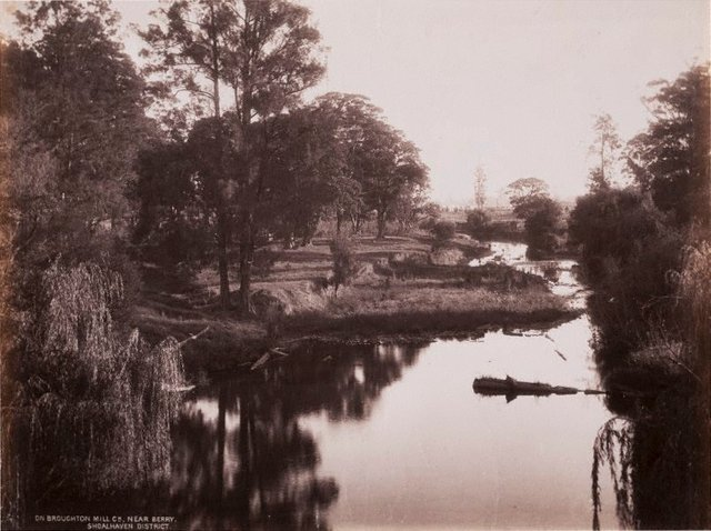 An image of On Broughton Mill Creek near Berry