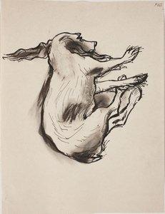 (Study of sleeping dog) (Late Sydney Period),  by William Dobell