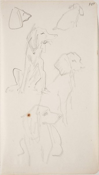 An image of (Dog studies) (Late Sydney Period) by William Dobell