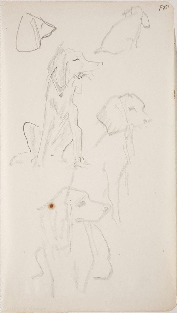 An image of (Dog studies) (Late Sydney Period)