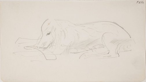 An image of (Dog study) (Late Sydney Period) by William Dobell
