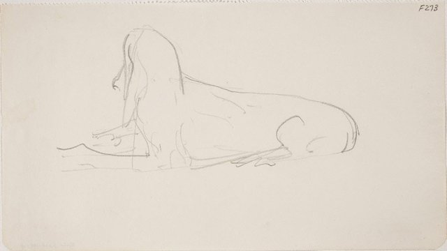An image of (Dog study) (Late Sydney Period)