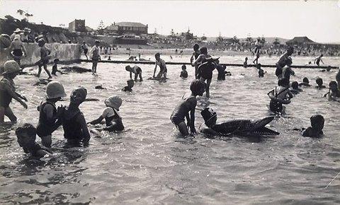 Dee Why Pool II, 1934 by Harold Cazneaux