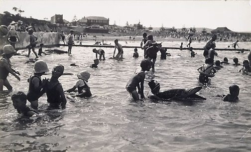 An image of Dee Why Pool II by Harold Cazneaux