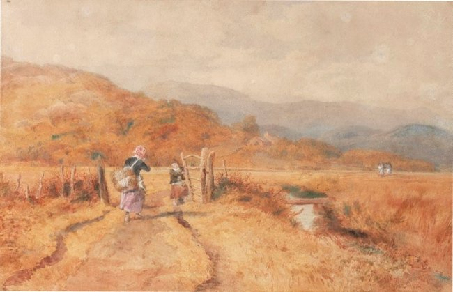 AGNSW collection John Henry Mole The road to the peat bog, near Barmouth, North Wales (1874) 1087