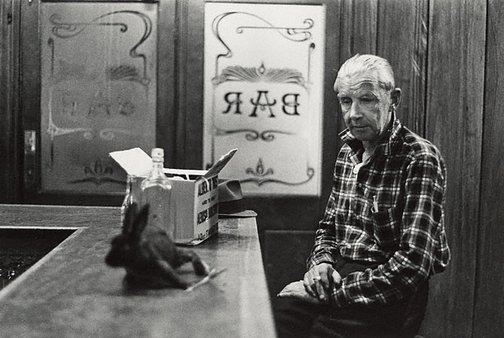 An image of Man with drunken rabbit, Newcastle Hotel, Sydney by Robert McFarlane