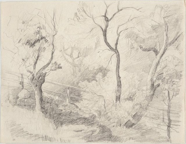 An image of Study of trees and fence, Northwood Point