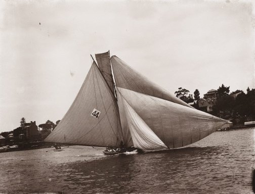 An image of Untitled (yachting in Sydney Harbour) by Unknown, Kerry & Co