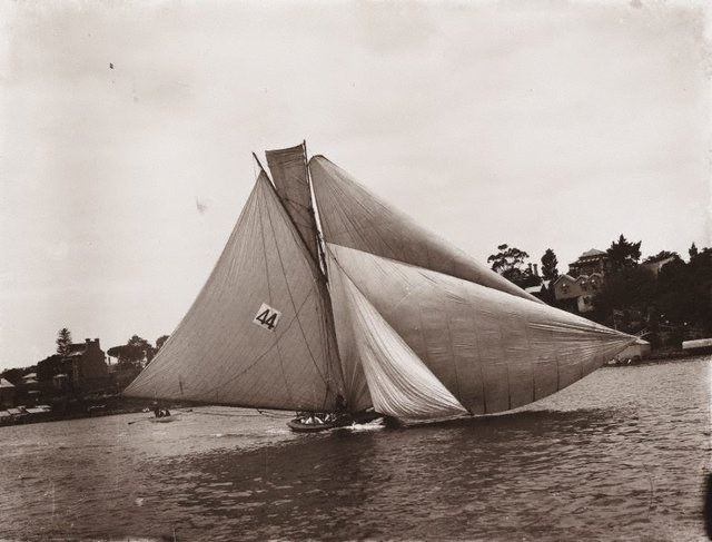 An image of Untitled (yachting in Sydney Harbour)