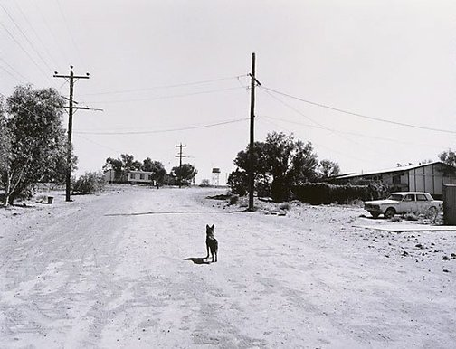 An image of Mt Gunson town centre, married quarters by Gerrit Fokkema
