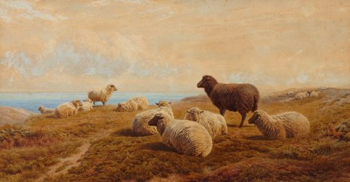 An image of Sheep on the Sussex Downs by Frederick Williamson