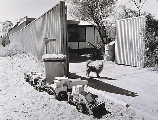 An image of Dogs and trucks, married quarters, Mt Gunson by Gerrit Fokkema