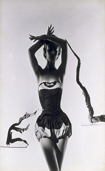 An image of Fashion illustration (Model with driftwood)