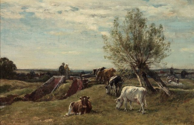 An image of Landscape and cattle