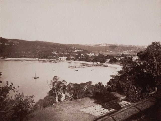 An image of Double Bay, Sydney