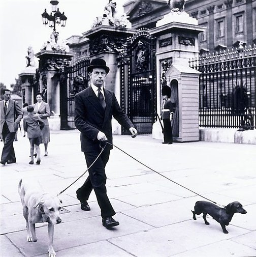 An image of Outside Buckingham Palace, London by David Moore