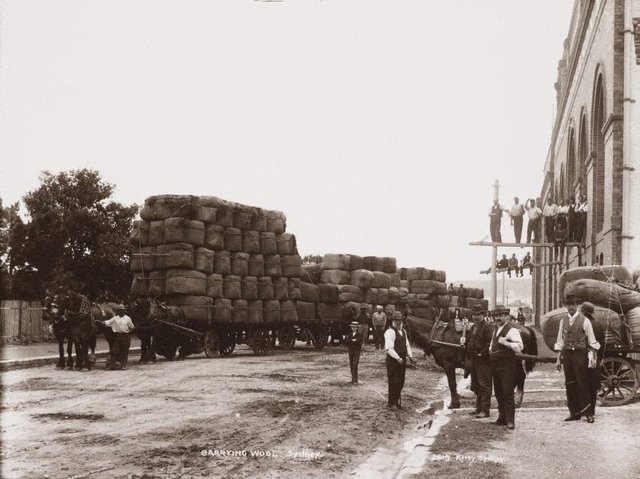 An image of Carrying wool, Sydney