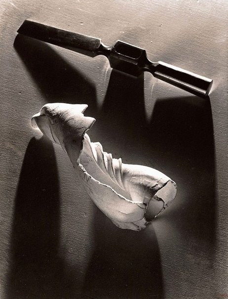 An image of Two forms by Max Dupain