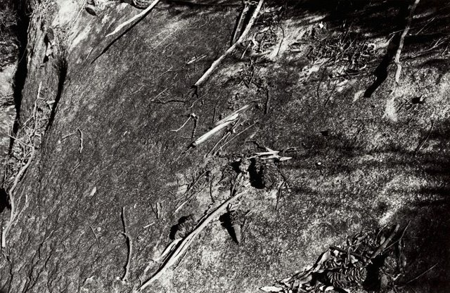 An image of Untitled (Rockface)