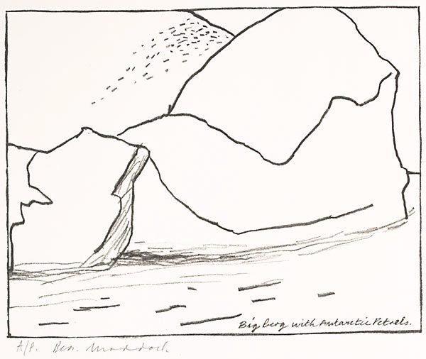 An image of Big berg with Antarctic petrels