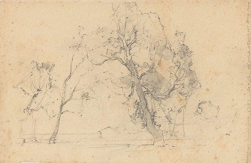 An image of (Study of trees) by Sydney Long