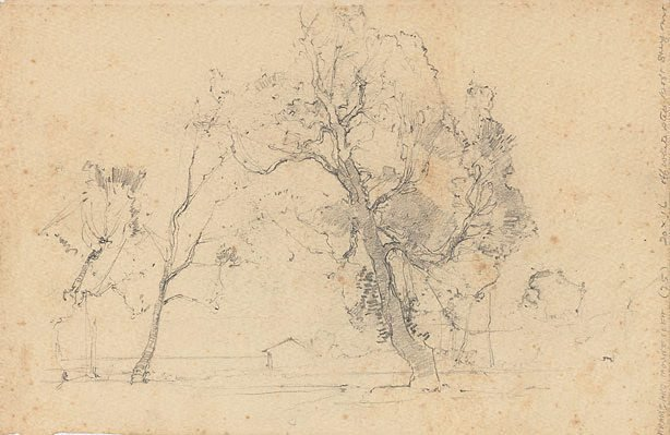 An image of (Study of trees)
