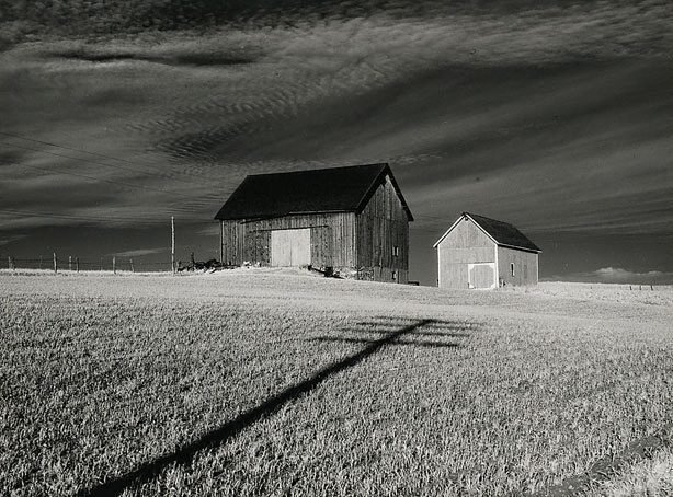 An image of Two barns and cross, vicinity of Dansville, New York
