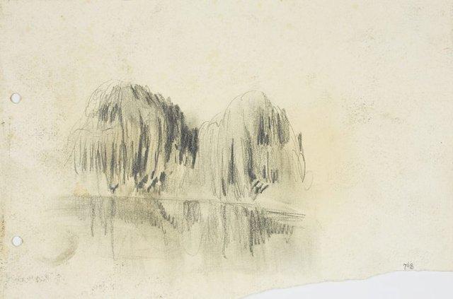 An image of Willows along the Parramatta River