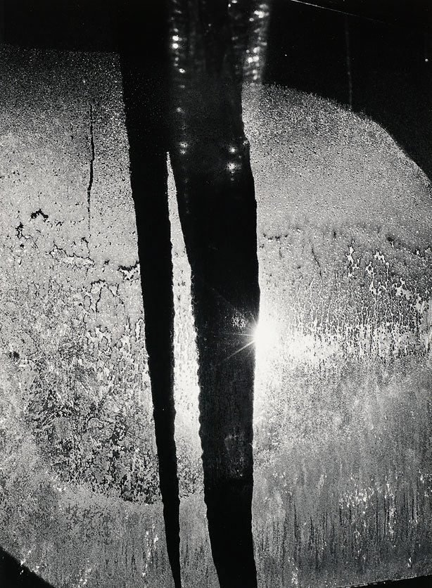 An image of Icicle in light, Rochester, New York, January 17, 1959