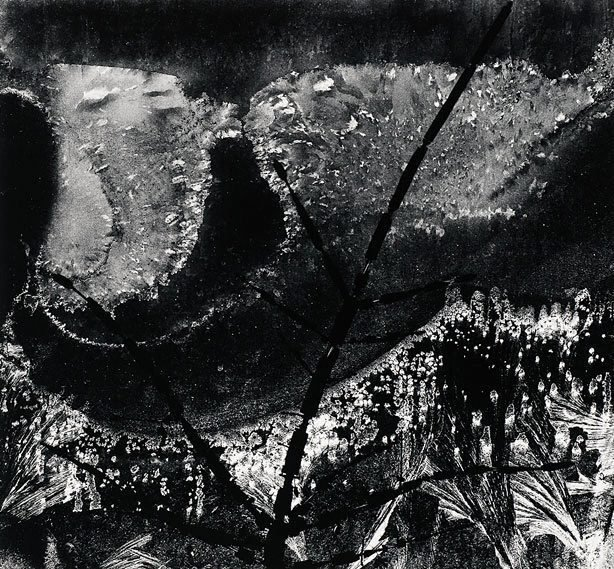 An image of Ritual branch, frost on window, December 8, 1958