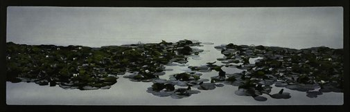 An image of Waterlilies by William Delafield Cook