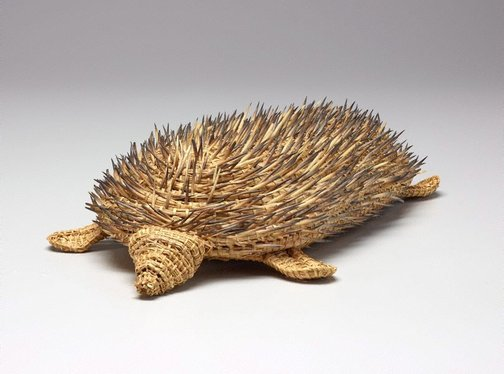An image of Echidna by Yvonne Koolmatrie