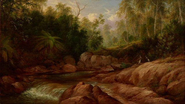 An image of Creek scene, Tilba Tilba
