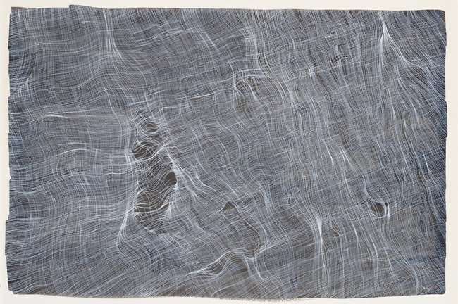 AGNSW collection Rubaba Haider The spider's touch, how exquisitely fine! Feels at each thread and lives along the line (Alexander Pope) V 2017