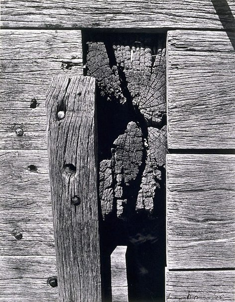 An image of Planks and joinery, Bay Street Wharf by Max Dupain